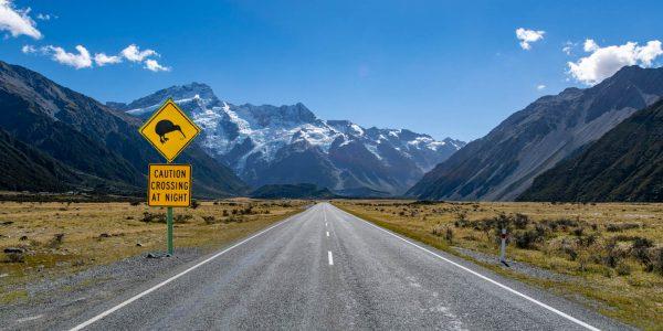 New Zealand Medical Recruitment Agencies